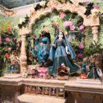 7 февраля - Нитьянанда-трайодаши, День явления Господа Нитьянанды