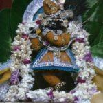 7 мая - День Явления Радха Рамана Деваджи